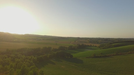 Aerial view of sunny countryside farm fields