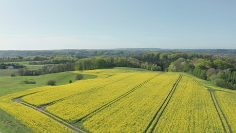 Aerial view of the countryside