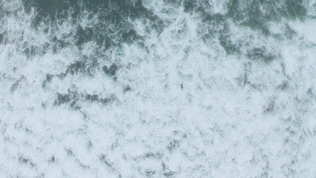 Aerial view of the sea and people surfing