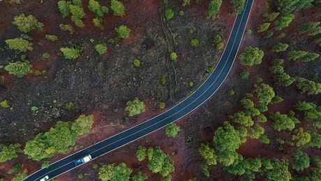 Aerial view of traffic in a road through the woods