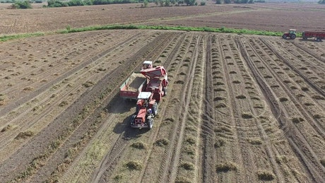 Agricultural vehicles working in the field
