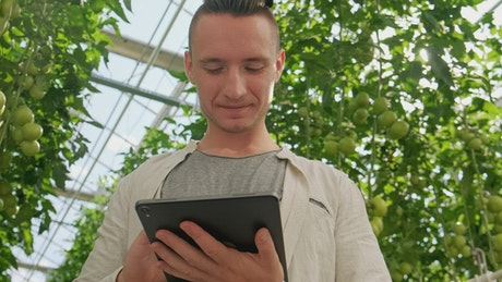 Agronomist working on a tablet