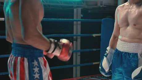 Amateur boxers during a practice in the gym