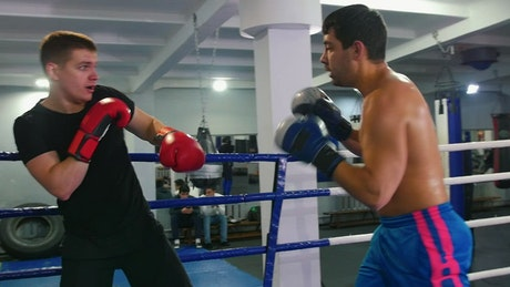 Amateur boxers training in the ring