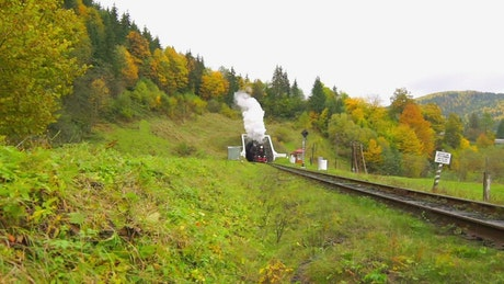 An old steam train going out of the tunnel