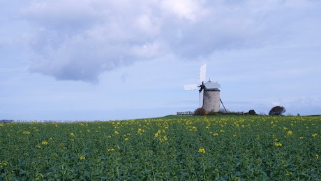An old windmill in the field