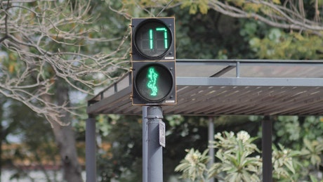 Animated pedestrian traffic light with a reverse timer