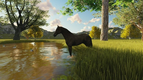 Animation of a horse drinking water from a lake