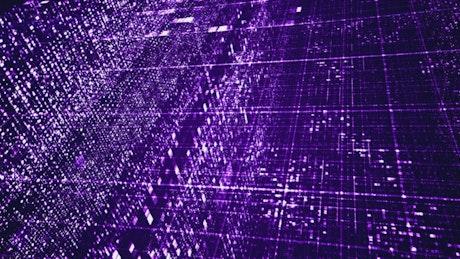 Animation of digital networks