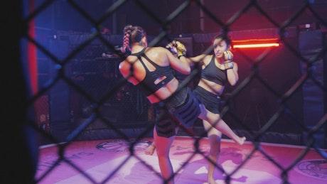 Arduous mixed martial arts combat between two women