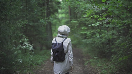 Backpacker walking on the forest