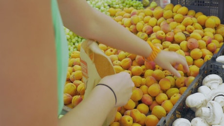 Bagging Apricots in store
