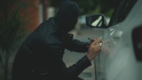 Balaclava assailant steals computer from car
