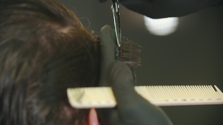 Barber cutting clients hair with  scissors