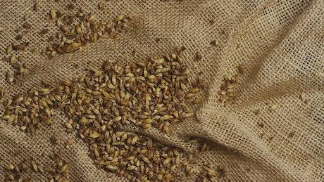 Barley grains on a natural fabric