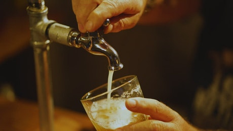 Bartender serving beer from a tap in a glass in the bar