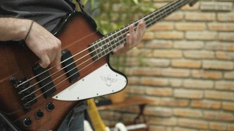Bass guitarist playing
