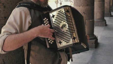 Bearded accordionist plays the accordion