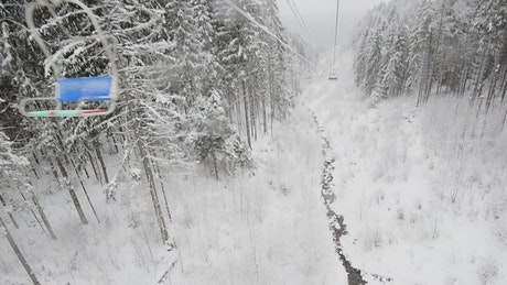 Beautiful frozen forest seen from a ski station