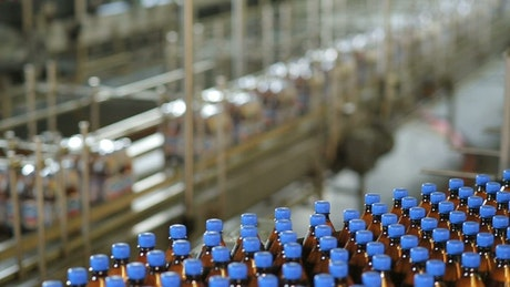 Beer bottle production line in the factory