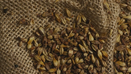 Beer brewing ingredients on a natural fabric