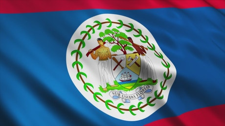 Belize flag from the American continent