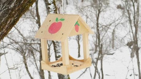 Birds feeding on a snowy day