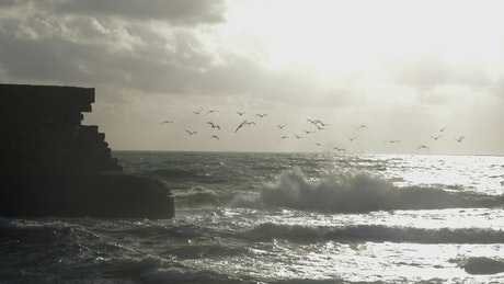 Birds lifting off from the ocean