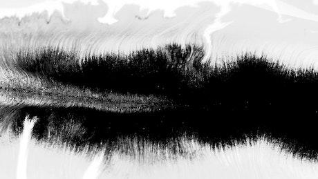 Black and white ink underwater