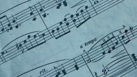 Blood of murder spilled on sheet music