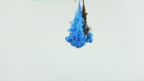 Blue and black ink shot mixing underwater