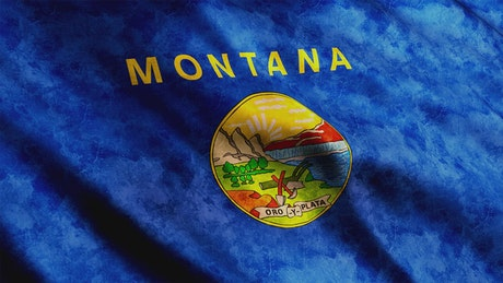 Blue flag of Montana State