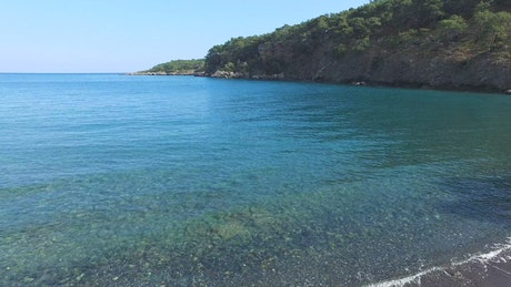Blue sea and forest