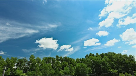 Blue sky above a vibrant forest