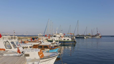 Boats anchored in a harbor