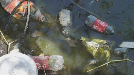 Bottles and bags in the dirty water of a river
