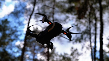 Bottom shot of a drone hovering in the woods