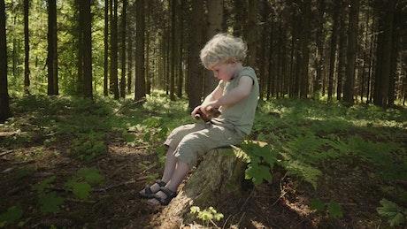 Boy playing in woodland
