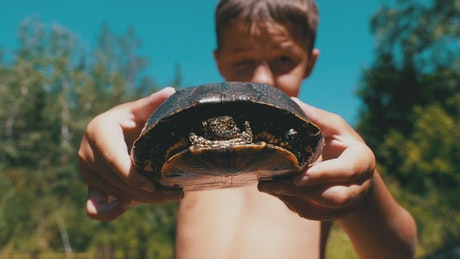 Boy showing a small turtle to the camera