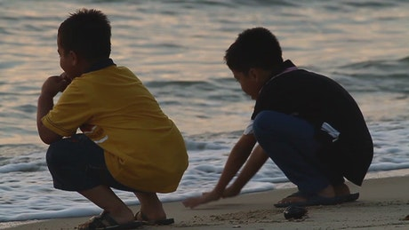 Boys at the beach during sunset
