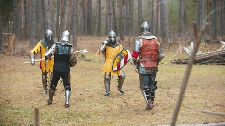 Brave medieval knights in a battle