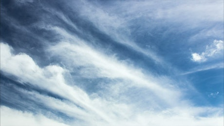 Bright white clouds