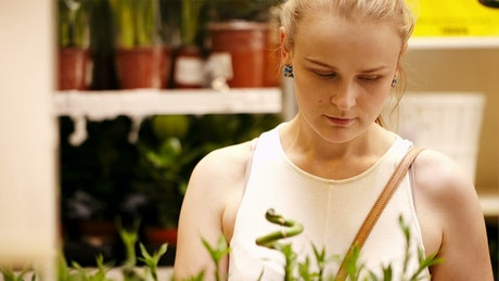 Browsing ornamental plants
