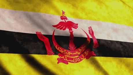 Brunei flag, full screen