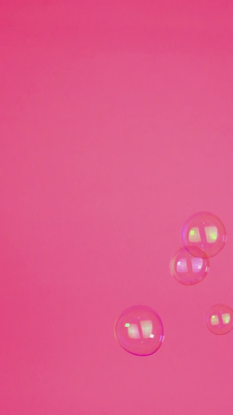 Bubbles floating on a pink background