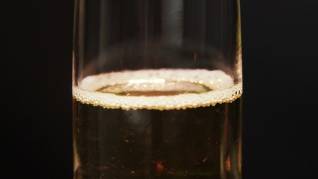 Bubbles in a glass of Champagne