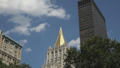 Buildings around Madison Square Park