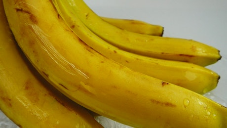 Bunch of bananas wet with water