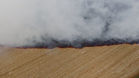 Burning of agricultural fields