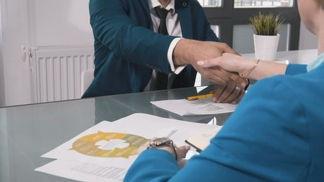 Businessman and client handshake over project plan